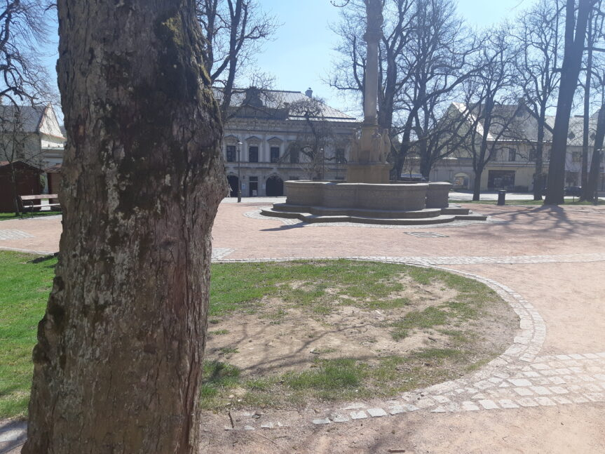 Kaštany na náměstí nejsou v dobrém stavu